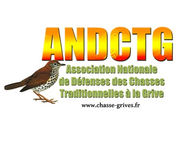 ANDCTG