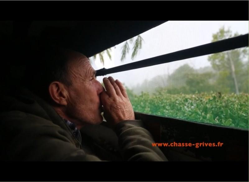 l'association nationale de defense des chasses traditonnelles à la grive donne la parole à des passionnés des grives