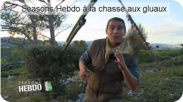 david chaignon d�couvre la chasse aux gluaux sur sesns hebdo association de defense des chasses traditonnelles � la grive